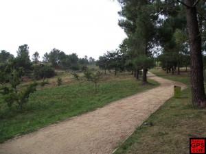 Campo Lameiro