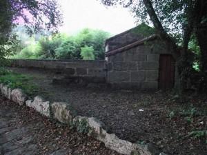 Caselas